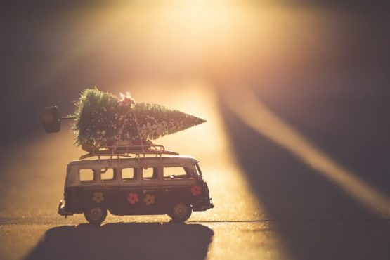 Are the holidays complicated in your family? You will survive – here's how