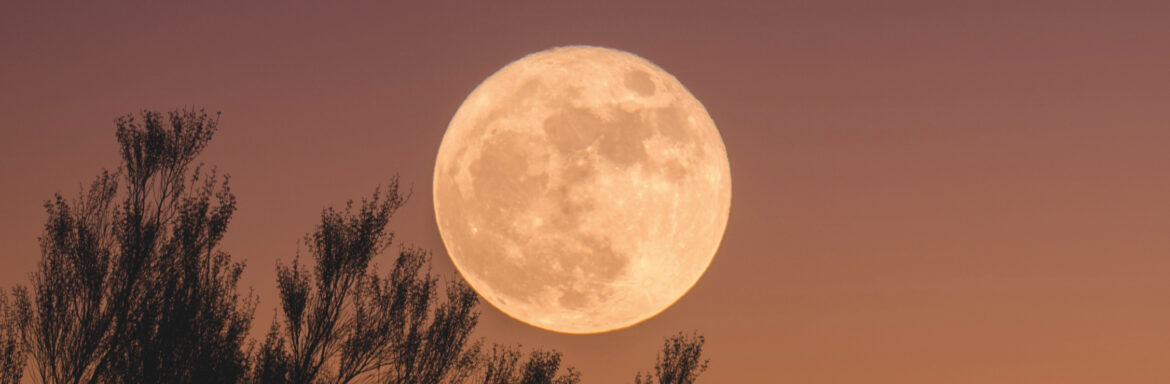 Full Moon in Pisces: What You Will Notice